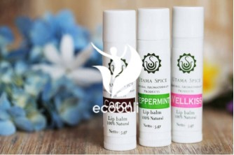 Lip balm Set (Cocoa, Peppermint & Wellkiss)